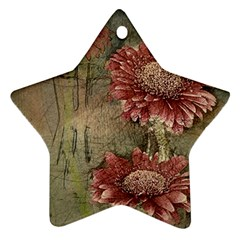 Flowers Plant Red Drawing Art Star Ornament (Two Sides)