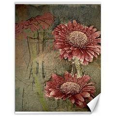 Flowers Plant Red Drawing Art Canvas 12  x 16