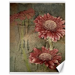 Flowers Plant Red Drawing Art Canvas 18  x 24