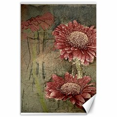 Flowers Plant Red Drawing Art Canvas 24  x 36
