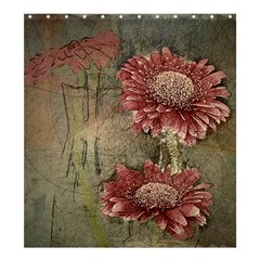 Flowers Plant Red Drawing Art Shower Curtain 66  X 72  (large)