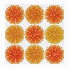 Orange Discs Orange Slices Fruit Medium Glasses Cloth