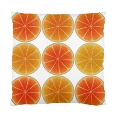 Orange Discs Orange Slices Fruit Standard Cushion Case (One Side)