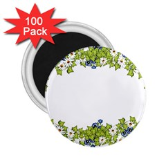 Birthday Card Flowers Daisies Ivy 2 25  Magnets (100 Pack)