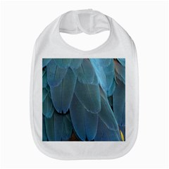 Feather Plumage Blue Parrot Amazon Fire Phone