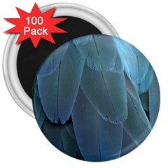 Feather Plumage Blue Parrot 3  Magnets (100 Pack)