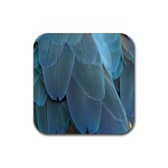 Feather Plumage Blue Parrot Rubber Coaster (square)