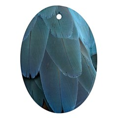 Feather Plumage Blue Parrot Oval Ornament (Two Sides)