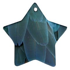 Feather Plumage Blue Parrot Star Ornament (two Sides)