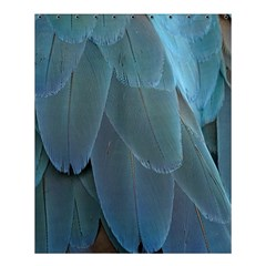 Feather Plumage Blue Parrot Shower Curtain 60  x 72  (Medium)