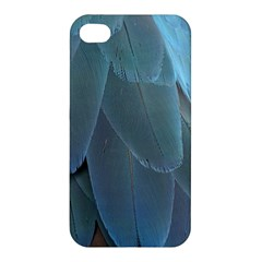 Feather Plumage Blue Parrot Apple Iphone 4/4s Premium Hardshell Case