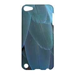 Feather Plumage Blue Parrot Apple iPod Touch 5 Hardshell Case