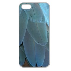 Feather Plumage Blue Parrot Apple Seamless Iphone 5 Case (clear)