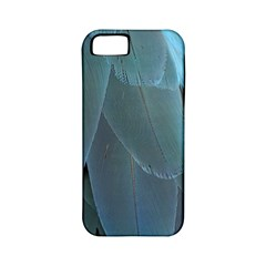 Feather Plumage Blue Parrot Apple Iphone 5 Classic Hardshell Case (pc+silicone)