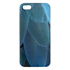 Feather Plumage Blue Parrot Iphone 5s/ Se Premium Hardshell Case