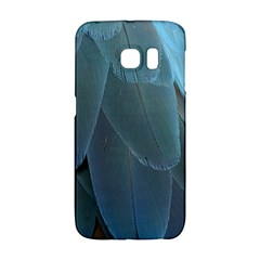 Feather Plumage Blue Parrot Galaxy S6 Edge