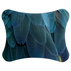 Feather Plumage Blue Parrot Jigsaw Puzzle Photo Stand (bow)
