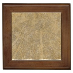 Abstract Forest Trees Age Aging Framed Tiles