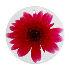 Flower Isolated Transparent Blossom Ornament (Round)