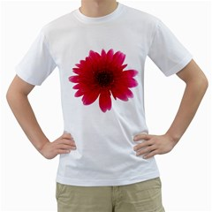 Flower Isolated Transparent Blossom Men s T Shirt (white) (two Sided)