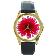 Flower Isolated Transparent Blossom Round Gold Metal Watch