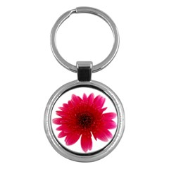 Flower Isolated Transparent Blossom Key Chains (Round)