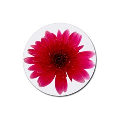 Flower Isolated Transparent Blossom Rubber Round Coaster (4 pack)