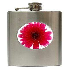 Flower Isolated Transparent Blossom Hip Flask (6 oz)