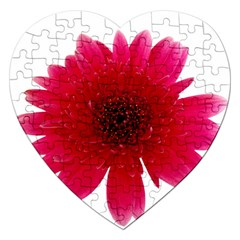 Flower Isolated Transparent Blossom Jigsaw Puzzle (Heart)