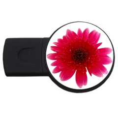 Flower Isolated Transparent Blossom USB Flash Drive Round (4 GB)