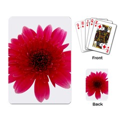 Flower Isolated Transparent Blossom Playing Card