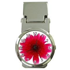 Flower Isolated Transparent Blossom Money Clip Watches