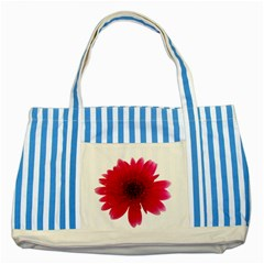 Flower Isolated Transparent Blossom Striped Blue Tote Bag