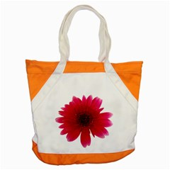 Flower Isolated Transparent Blossom Accent Tote Bag