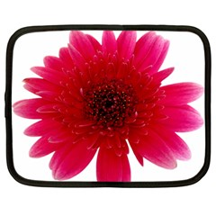 Flower Isolated Transparent Blossom Netbook Case (large)