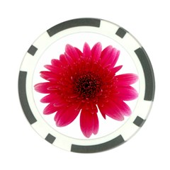 Flower Isolated Transparent Blossom Poker Chip Card Guard (10 Pack)
