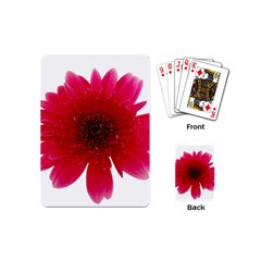 Flower Isolated Transparent Blossom Playing Cards (mini)
