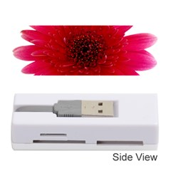 Flower Isolated Transparent Blossom Memory Card Reader (Stick)