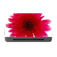 Flower Isolated Transparent Blossom Memory Card Reader With Cf