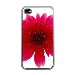 Flower Isolated Transparent Blossom Apple Iphone 4 Case (clear)