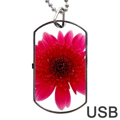 Flower Isolated Transparent Blossom Dog Tag USB Flash (One Side)