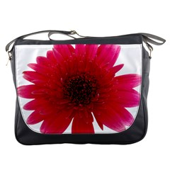 Flower Isolated Transparent Blossom Messenger Bags