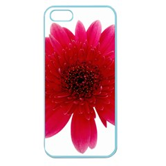 Flower Isolated Transparent Blossom Apple Seamless Iphone 5 Case (color)
