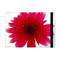 Flower Isolated Transparent Blossom Apple Ipad Mini Flip Case