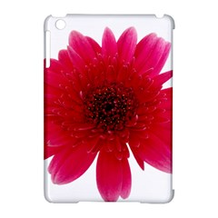 Flower Isolated Transparent Blossom Apple Ipad Mini Hardshell Case (compatible With Smart Cover)