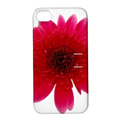 Flower Isolated Transparent Blossom Apple iPhone 4/4S Hardshell Case with Stand