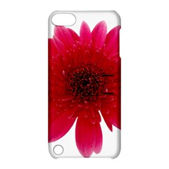 Flower Isolated Transparent Blossom Apple iPod Touch 5 Hardshell Case with Stand