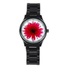 Flower Isolated Transparent Blossom Stainless Steel Round Watch