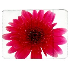 Flower Isolated Transparent Blossom Samsung Galaxy Tab 7  P1000 Flip Case