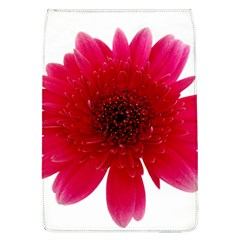Flower Isolated Transparent Blossom Flap Covers (l)